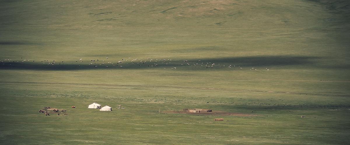 Mongolia's Grassland - Two Yurts